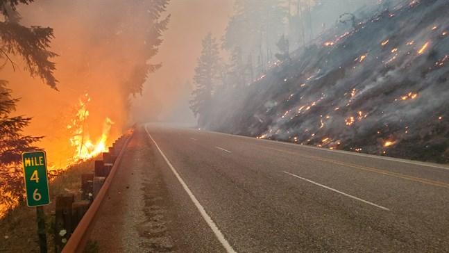 Eldhärjad terräng i västra Oregon den 7 juli.