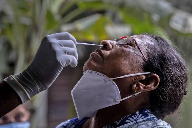 En kvinna i staden Gauhati i Indien testas för covid-19 den 16 juli.