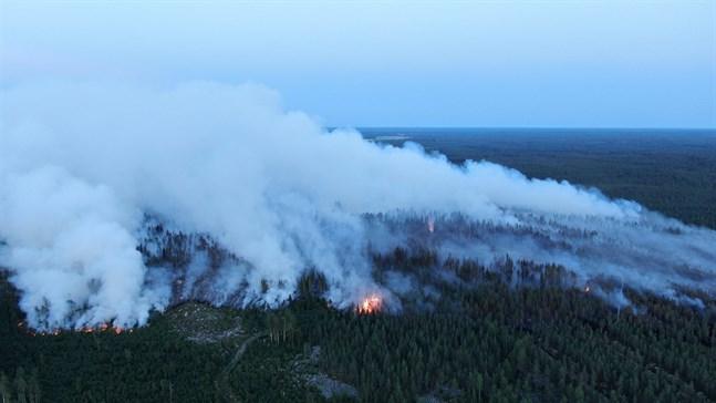 Som mest brann 200 hektar markterräng i Kalajoki under måndagskvällen.