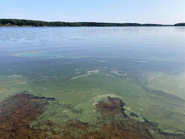 Så här såg det ut i Monäs sund strax söder om båthamnen vid Skata på tisdag morgon.