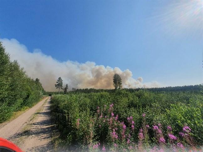 Så här såg det ut över Kalajoki i måndags. Branden är ännu inte släckt och röklukten har färdats ända till Vasatrakten.
