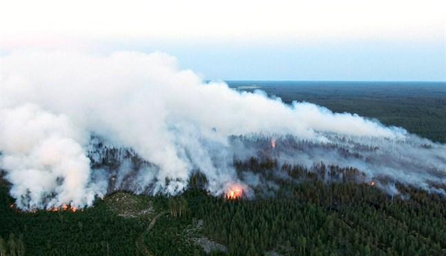 Arkivbild: 70 hektar stor markbrand i Kalajokiskogen som fick sin start på måndags eftermiddagen.