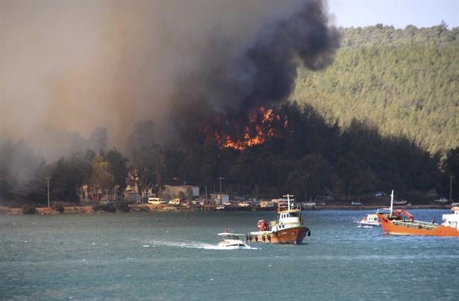 En brand rasar i den turkiska staden Bodrum, där ett hotell har evakuerats. Det är bara en i raden av bränder som har brutit ut längs med Turkiets sydkust.