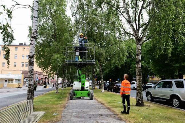 Christian Kull och Zacharias Häggvik sätter upp ljusslingorna. De började på torsdagen och arbetet väntas vara klart på tisdag, säger Kull.