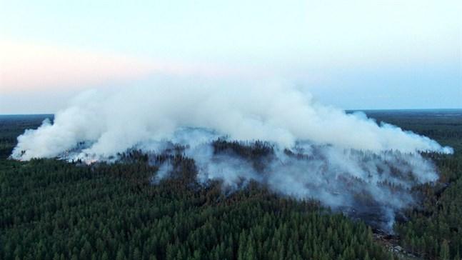 Drygt 300 hektar har brunnit i Kalajoki sedan i måndags. Också 1970 drabbades Kalajoki av en stor skogsbrand, då brann hela 1600 hektar.