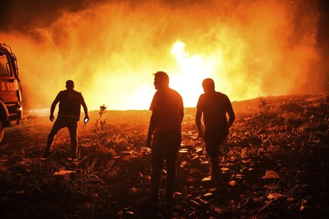 Brandmän och bybor kämpar mot lågorna i byn Kirli, nära staden Manavgat. Det är bara en i raden av bränder som har brutit ut längs med Turkiets sydkust.