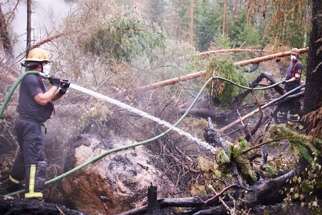 Bilden visar tydligt hur besvärlig terrängen är. Här håller Peter Bäck slangen medan Kristoffer Bergvik assisterar i bakgrunden. Båda är från Smedsby-Böle FBK.