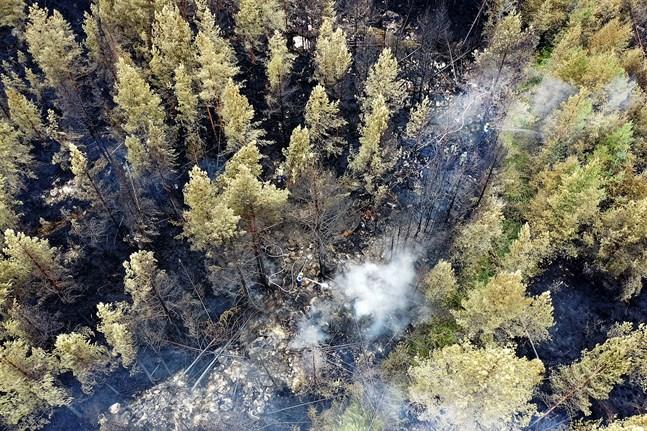 Upp till 229 bränder har upptäckts under de 884 flygningar som har gjorts hittills i år.