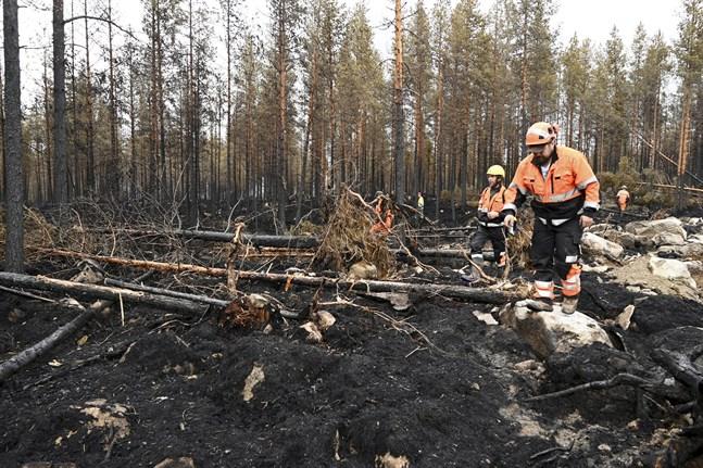Den stora markbranden i Kalajoki har pågått i över en vecka. Fortfarande pågår släckningsarbete i området.