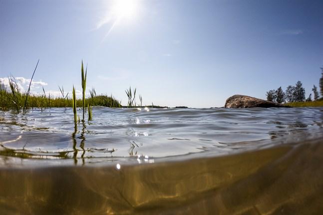 I10 artiklar har VBL och ÖT djupdykt i olika teman som på olika sätt berör Östersjön.