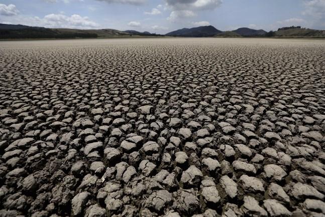 En uttorkad sjö i Colombia. I landet dödades i fjol minst 65 människor som kämpade mot miljöförstöringar.