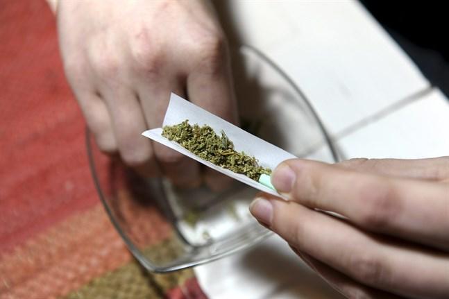 Synen på cannabis bör ha förankring i forskningen, påpekar skribenten.