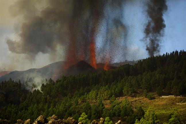 Lava skjuter upp från vulkanen Cumbre Vieja på kanarieön La Palma. Utbrottet startade på söndagseftermiddagen.