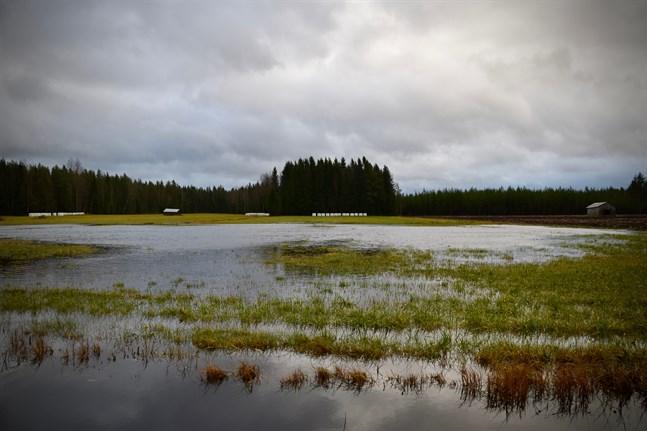 Regn i väst, växlande molnighet i söder och uppehåll i norr – det är prognosen för torsdag.