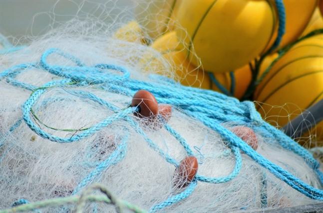 EU:s ministerråd för jordbruk och fiske beslöt att förbjuda allt kommersiellt laxfiske i Östersjöns huvudbassäng.