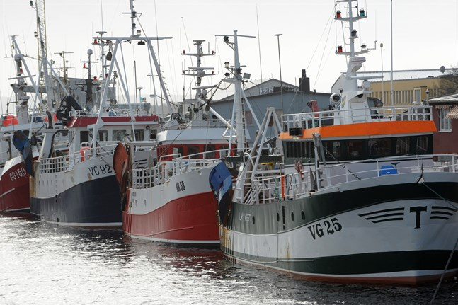 Oron är stor inom det småskaliga kustfisket sedan EU:s nya fiskekvoter är slutförhandlade.