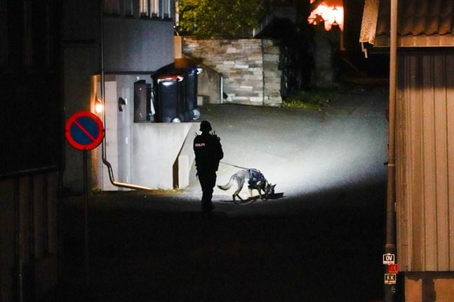 Polisen söker med hund i centrala Kongsberg.