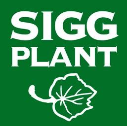 Sigg-Plant